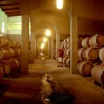 durbanville-hills-cellar_large